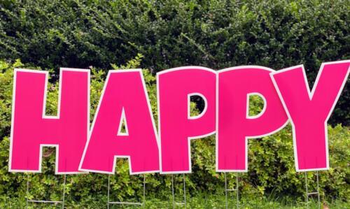 pink happy birthday yard card alexandria va
