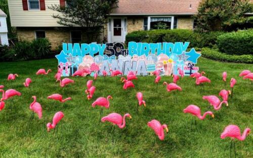 anna flamingo flocking birthday yard card annandale va