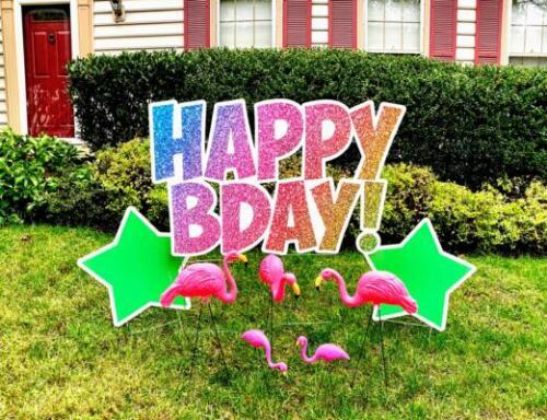 flamingos in yard youve been flocked happy birthday sign alexandria va