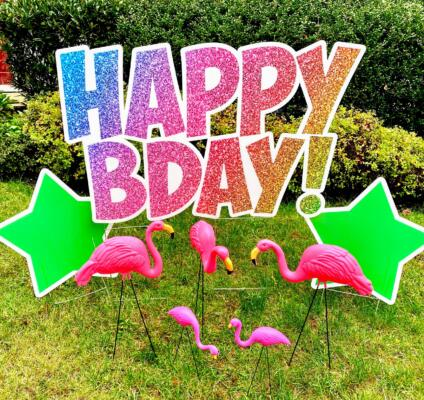 flamingos in yard you've been flocked springfield va