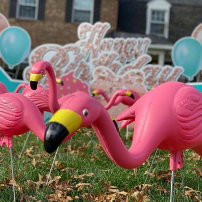 flamingo rose gold happy birthday mclean va