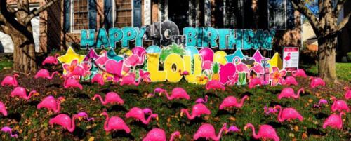 flamingo yard flocking Springfield VA