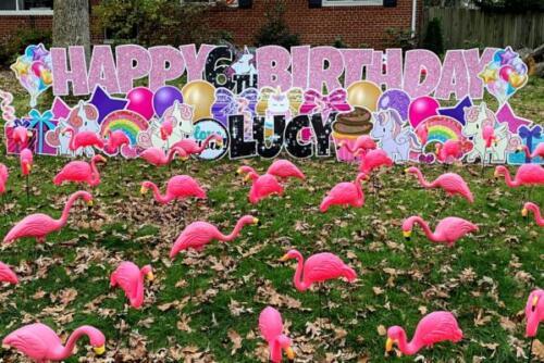happy birthday flamingo flocking yard sign springfield va