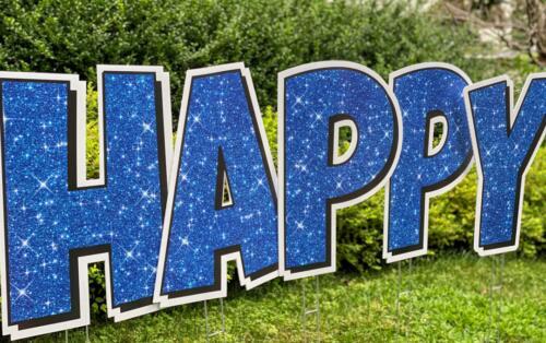 happy birthday yard card sign in alexandria va