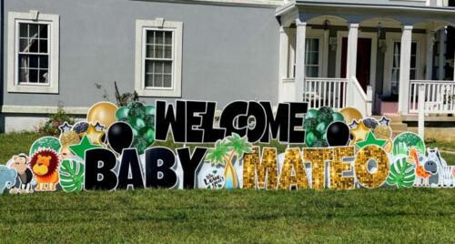 mateo baby homecoming yard sign alexandria va