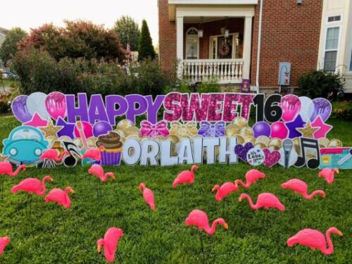 orlaith birthday yard sign springfield va
