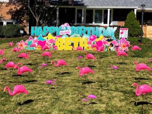 premium flamingo flocking yard card in alexandria va