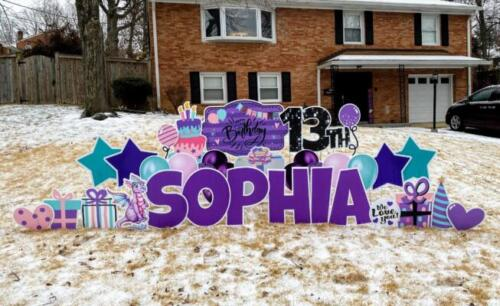 sophia birthday yard card springfield va
