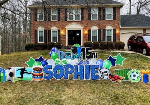 sophie 15th birthday yard cards springfield va