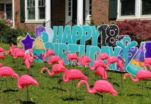 standard birthday yard flamingo flocking springfield va