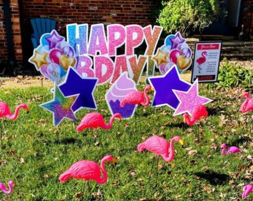 standard happy birthday yard card with flamingo flocking in burke va