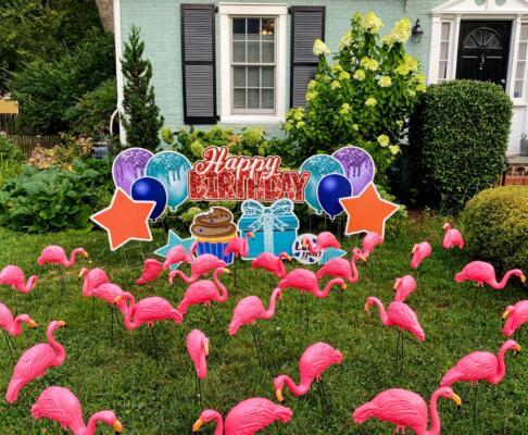 standard flamingo yard card flocking arlington va