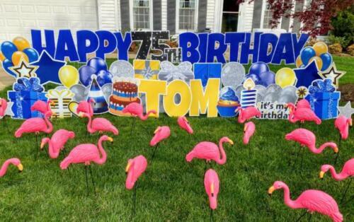 toms birthday yard sign flamingo flocking in springfield va