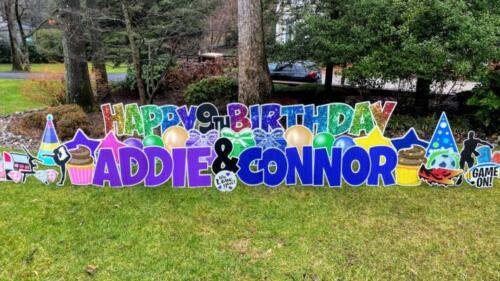 twin birthday yard card falls church va