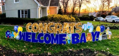 welcome home baby yard sign alexandria va